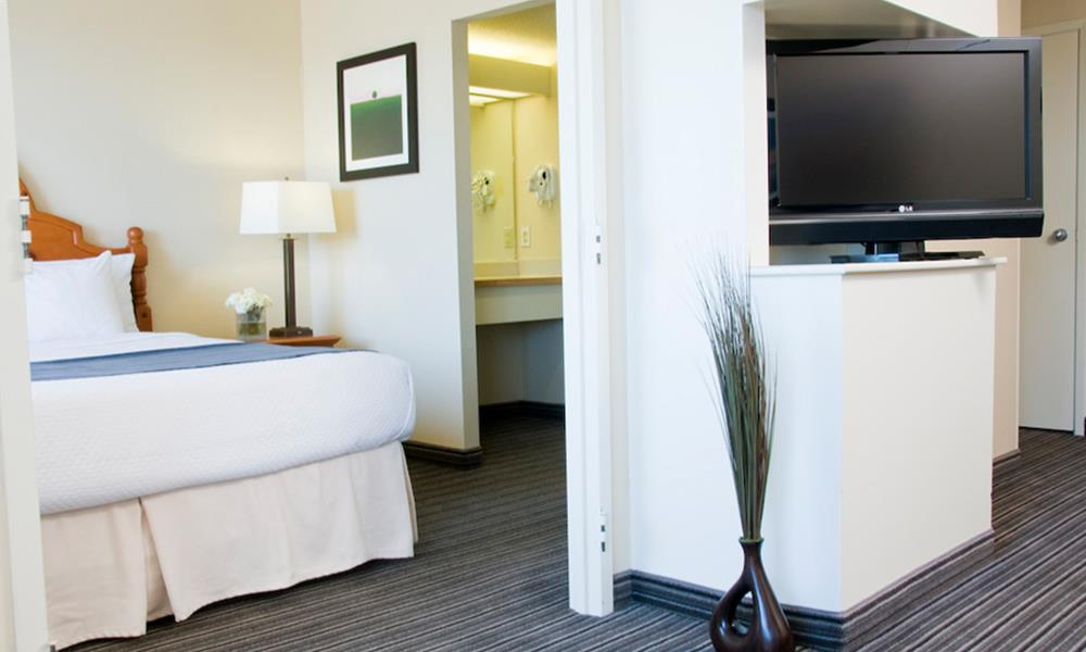 picture of one bedroom suite
